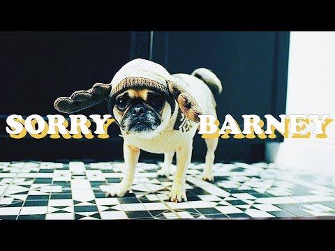 SORRY BARNEY + DRAMA AT HOME