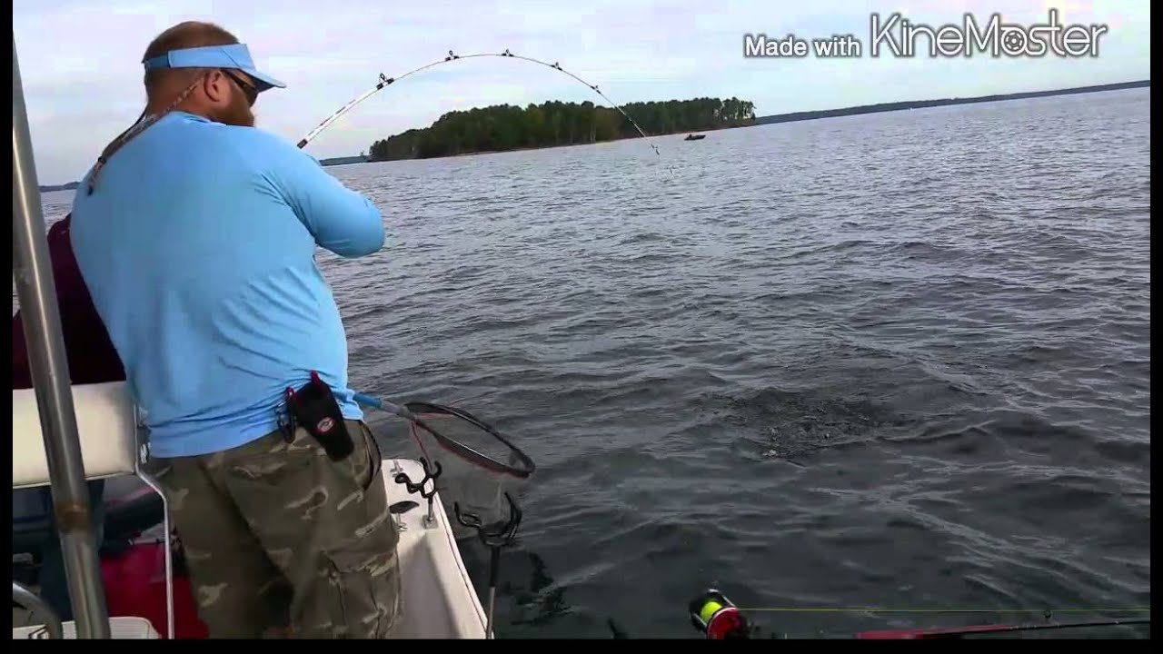 Jason bennet guide sevice lake murray sc youtube for Lake murray fishing report