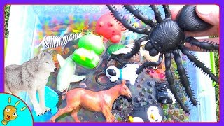 Learn Wild Animal Colors in Orbeez Tub for Kids by Squishee Nugget