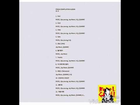 Prima Music Group 22.8 - Noir