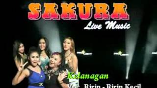 Video sakura live music download MP3, 3GP, MP4, WEBM, AVI, FLV Juli 2018