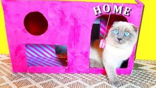 Розовый ДОМИК для КОШКИ из коробки от кукол ЛОЛ? КАК сделать Новый домик для котят СВОИМИ РУКАМИ DIY