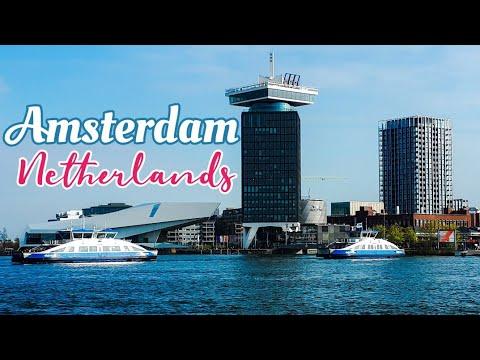 Walking around Amsterdam Central #Shorts #traveller #solotravel #amsterdamcity #adventure
