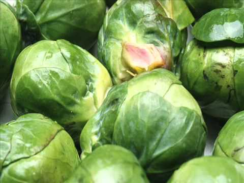 Lessov pres. Sapphire Coast - Brussels Sprout