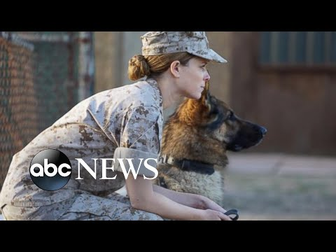 Kate Mara on 'Megan Leavey' and her relationship with sister Rooney
