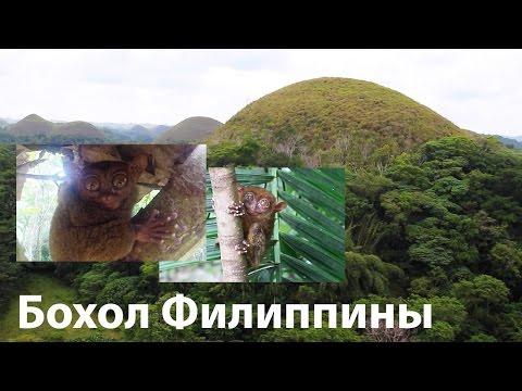 Ютуб Видео - Главная