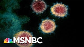 U.S. Coronavirus Death Toll Is Now Higher Than 9/11 Terror Attacks | The 11th Hour | MSNBC