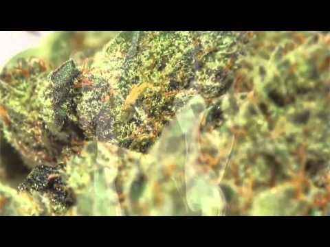 Happy 420    2012 Weed Anthem   Higher hd720