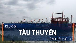 Kêu gọi tàu thuyền tránh bão số 11   VTC1