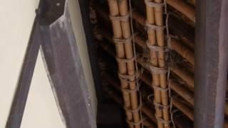 ヒナに餌をやるため巣に来たシジュウカラ @里山民家(2017.06.25 ) thumbnail