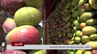 المانجو .. موسم خصب وخسائر بنصف مليار دولار لتراجع التصدير | تقرير يمن شباب