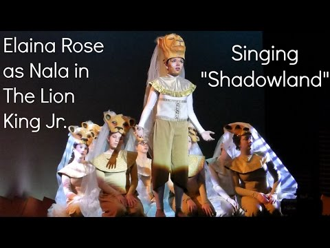Shadowland Lion King Jr.