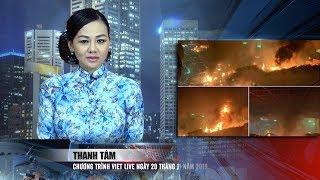 VIETLIVE TV ngày 20 11 2019