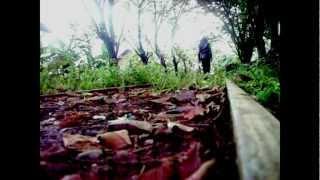 Freesia Rhodesian Ridgeback -SriGalau Version