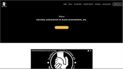 St Petersburg Accountant - National Association of Black Accountants