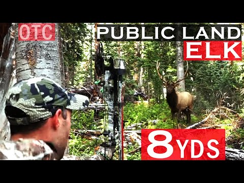 Colorado Public Land OTC Archery Elk Hunt