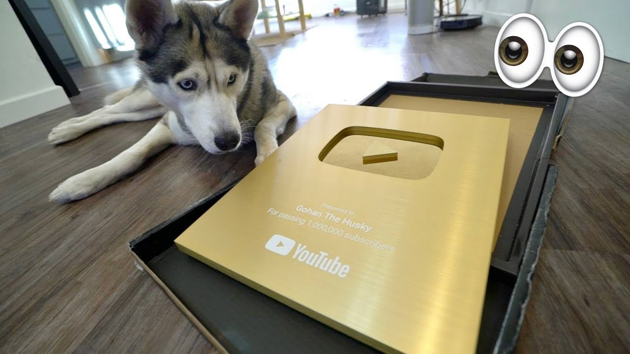 husky-unboxes-1-million-play-button-award-huge-announcements-lets-give-back