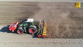 Mais säen / legen 2019 mit Väderstad Tempo u. Fendt 720 vom Agrarservice F. Lütjens bei Trockenheit