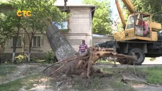 На Буюканах на жилой дом упало дерево(, 2015-06-12T14:00:37.000Z)