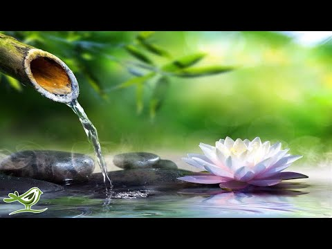 8 Hours of Relaxing Sleep Music: Sleeping Music, Relaxing Music, Fall Asleep Fast ★47��