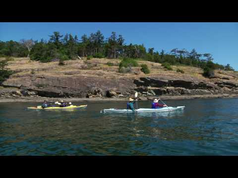 Shearwater Adventures Orcas Island