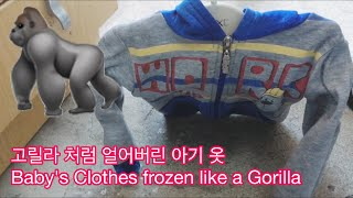 고릴라 처럼 얼어버린 아기 옷, 라트비아 날씨 영하 6…