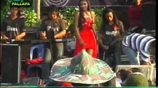 PALAPA PART 24 LIVE PAGURON PAYAMAN JAKEN PATI 2013 HARUSKAH BERAKHIR