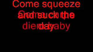 Metallica Carpe Diem Baby