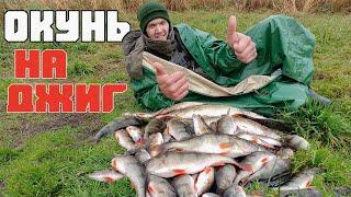 ЖОР ОСЕННЕГО ОКУНЯ Ловля окуня на спиннинг Осенняя рыбалка на окуня