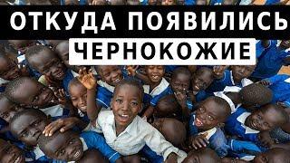 Download Откуда появились чернокожие люди. о.Максим Каскун Mp3 and Videos