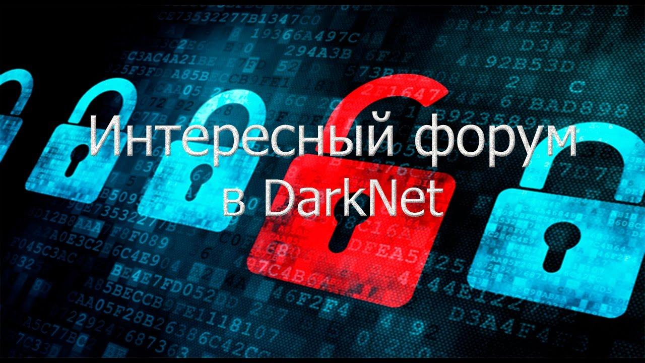 Darknet runion гирда тор браузер на флешку hidra