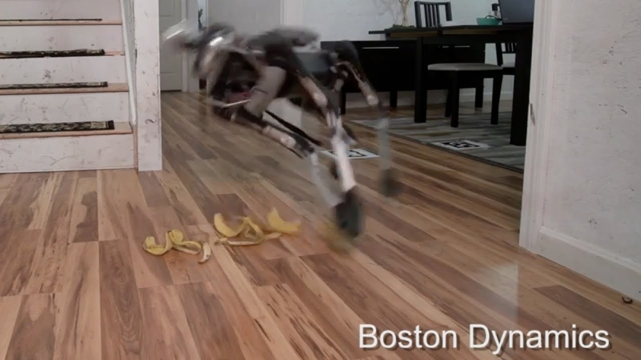 Boston Dynamics New Robot Dog Is Defeated By Banana Peels Youtube