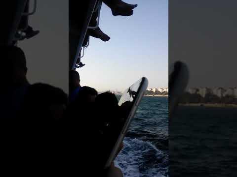 جولة بستنبول البحر