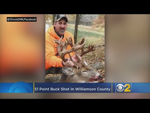 Craig Stevens - If it becomes certified, the 51 point buck would break the current record