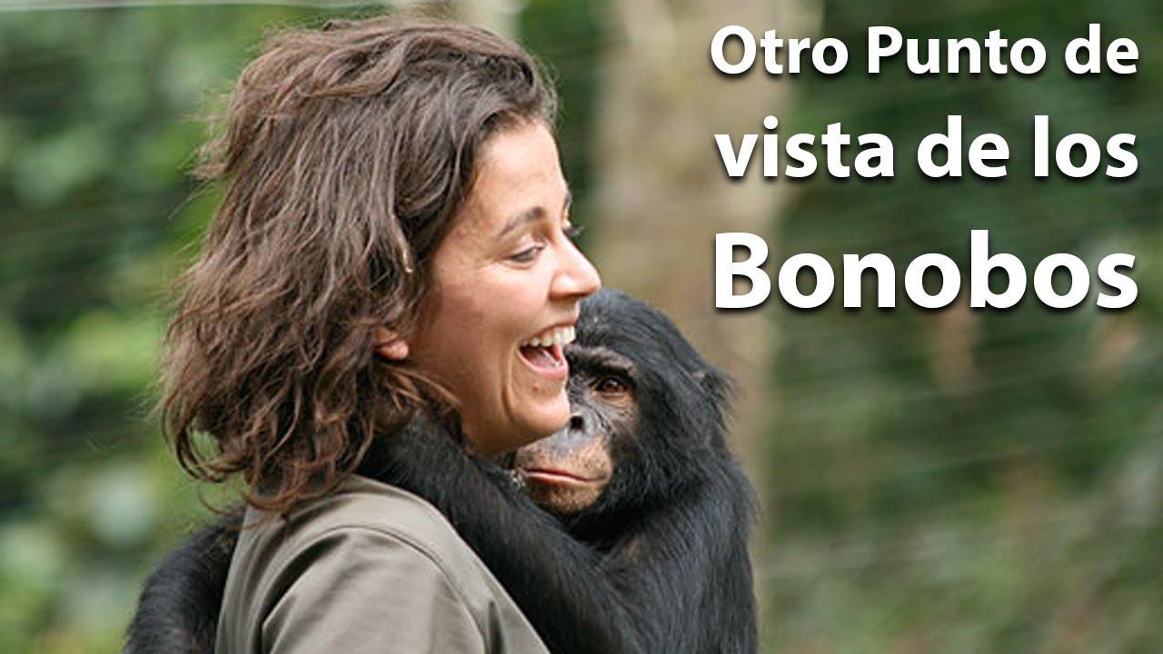 Conoces a los Bonobos? con la Dr. Isabel Behncke | @puertodeideas vlog6