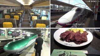 【HD 5.1ch】 東北新幹線で行く! 仙台周辺ぶらり旅 「Trip to Miyagi, Sendai to go by Tohoku Shinkansen」