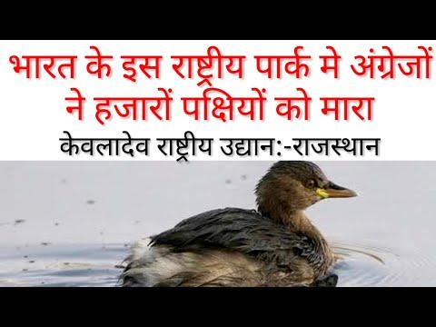भारत के इस राष्ट्रीय पार्क में प्रतिदिन हजारों पक्षियों का शिकार किया गया-KEOLADEV NATIONAL PARK