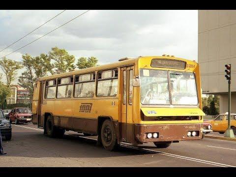 Autotransportes Urbanos de Pasajeros Ruta 100