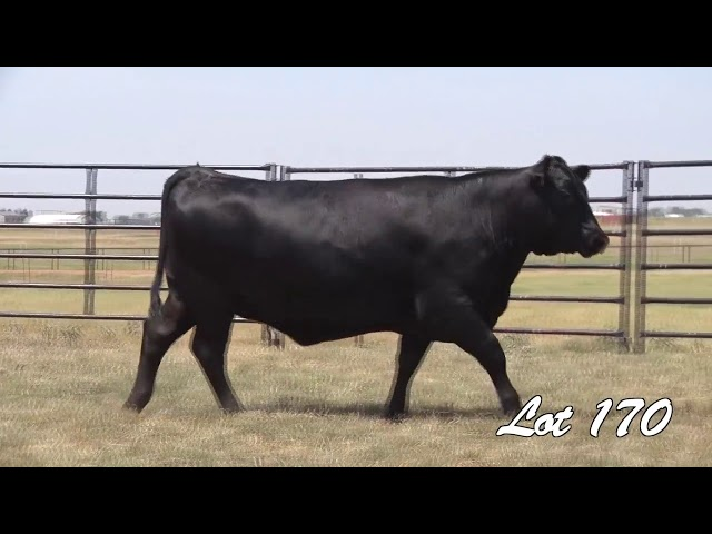 Pollard Farms Lot 170