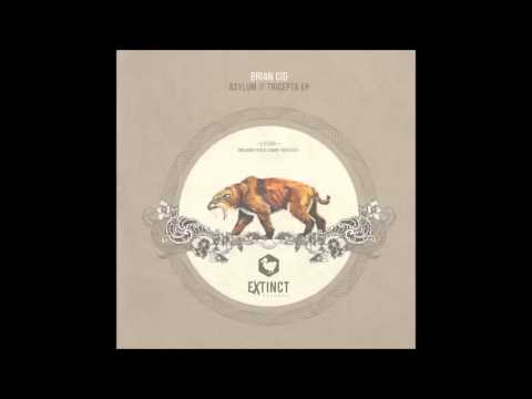 Brian Cid - Asylum (Original Mix) [Extinct Records]