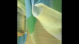 Roman Flügel - The Improviser - DialCD23