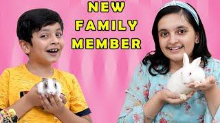NEW FAMILY MEMBER | Apna pet aagaya | Short movie of our pets | Aayu and Pihu Show Thumb