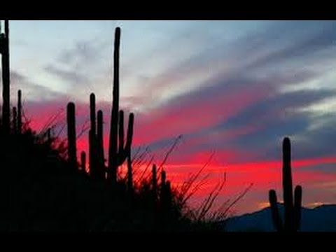 Calabria Ranch Estate Homes Auction February 24 Tucson, AZ