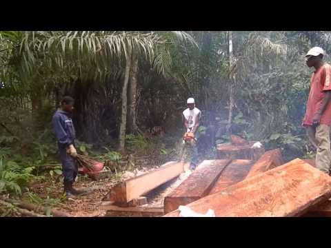 découpe des planches pour faire la maison au Gabon