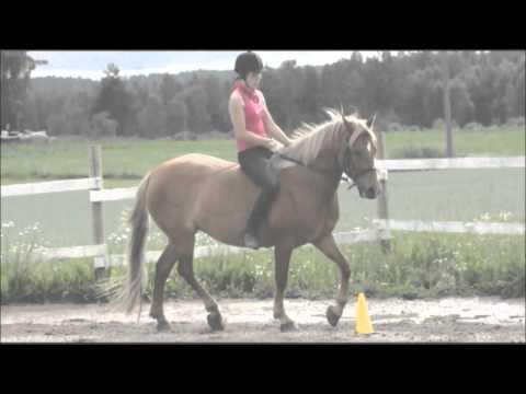 laura & sharlotta  [мемояוєѕ] 11/2009 - 8/2012