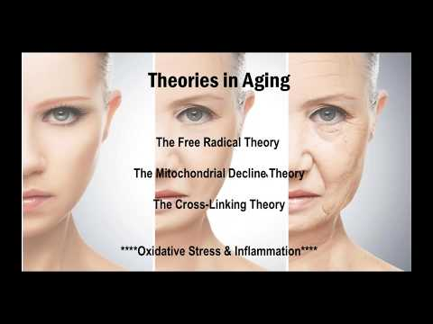 The Anti Aging Effects Of Earthing With Dr Emily Splichal