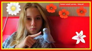 Vlog: Пять минут ми-ми-мишности🐼Джесси, Тоша, Маша и Я #Животные