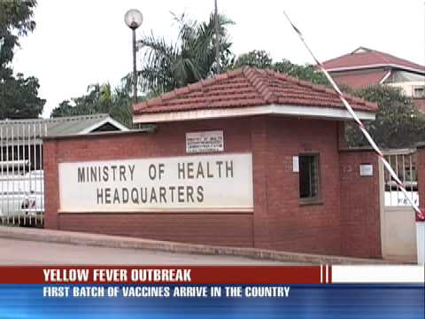 Yellow fever vaccines arrive
