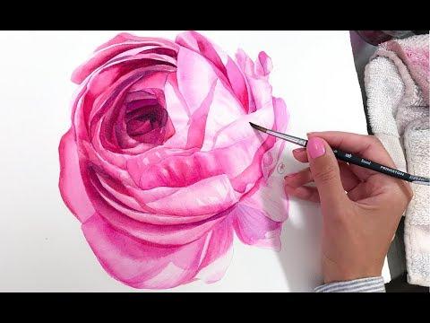 ranunculus-flower-in-watercolor-painting-demonstration
