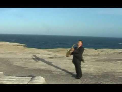 Bay di canh chim bien- Duc Huy